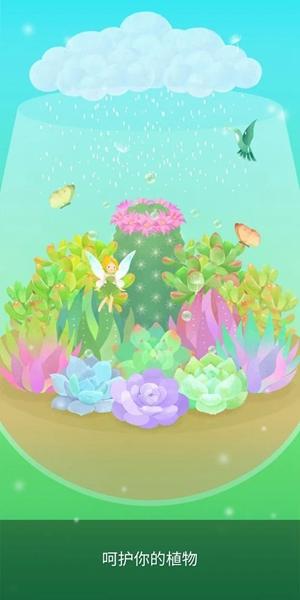 我的水晶花园